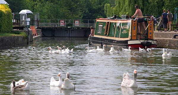 canal boat on going through a lock near banbury